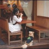 岡村靖幸 ~Premium Edition~『Me-imi』